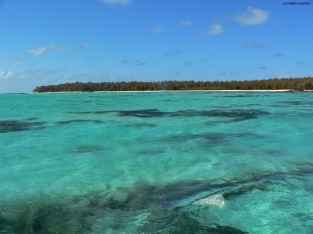 Sailing to Ile aux Cerfs