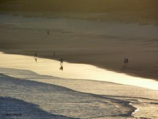 Port Macquarie_Coastal Walk view