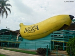 "Coffs Harbour_""attractions"""