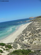 Kangaroo Island_Seal Bay