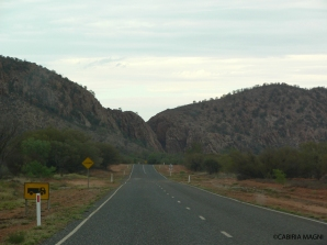 Alice Springs_sorroundings