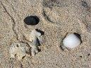 Ashram sand