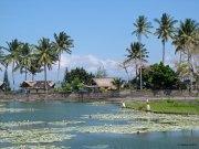 Lagoon_behind ashram