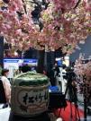Japan @BIT2013