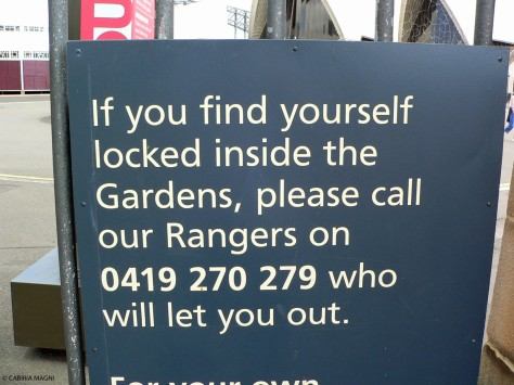 Help me rangers!!!