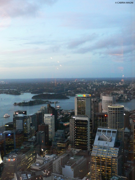 Sydney from the top