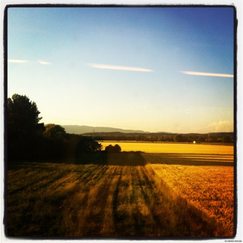 Ah, la Provence!