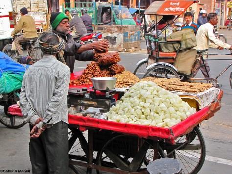 Jaipur cabiria magni