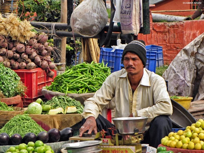 jaipur market man