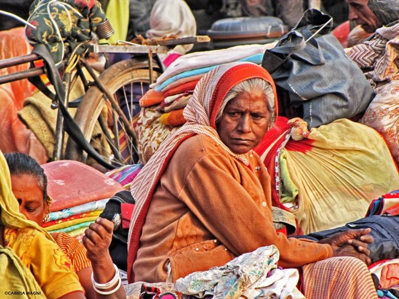 colours pashmina