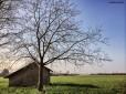 Verderio countryside Cabiria Magni