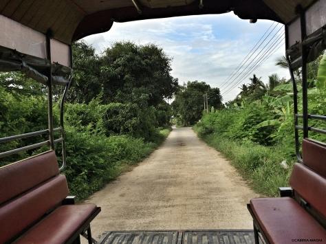 On the road Singburi Cabiria Magni