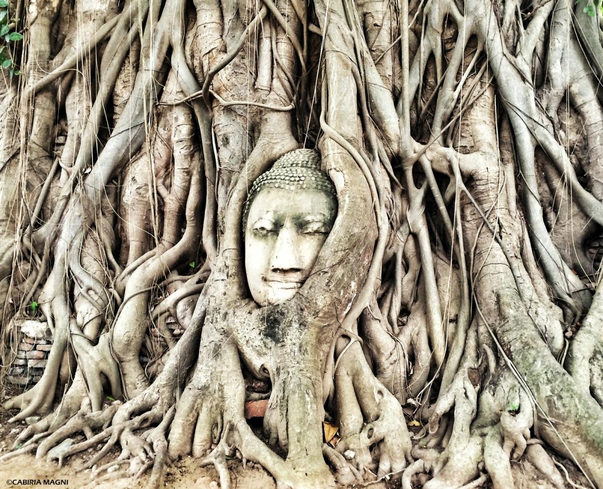 Ayutthaya: qualche informazione pratica (e una scena delle mie)