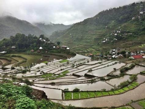 Le risaie di Batad, Filippine. Cabiria Magni