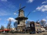 Mulini in città. Amsterdam Oost
