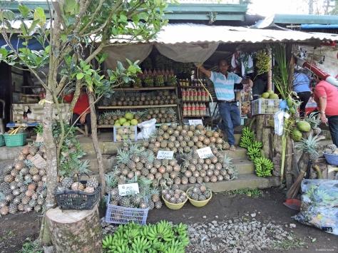 Bancarelle di ananas. Filippine, Luzon