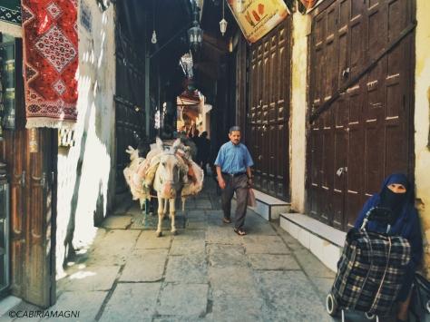 Fes, le strade della medina. Marocco