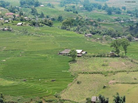 La valle intorno a Sapa. Cabiria Magni, Vietnam