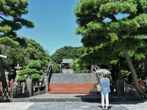 Tsurugaoka Hachiman-gu shrine, Kamakura, Giappone, Cabiria Magni
