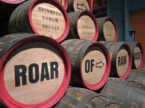 Dublino, Guinness Storehouse, Cabiria Magni