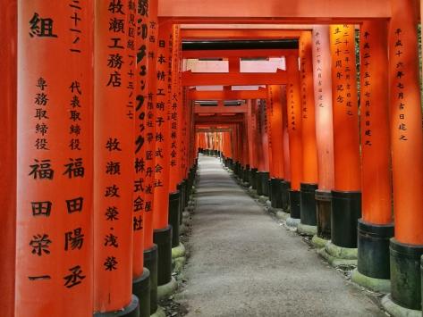 I famosi torii rossi del Fushimi Inari. Cabiria Magni, Giappone